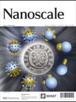 nano-scale2013
